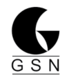 GSN a.s.